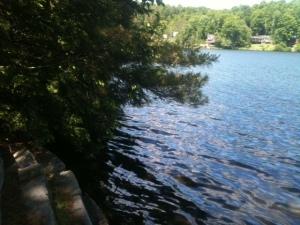The public swim area at our local lake.