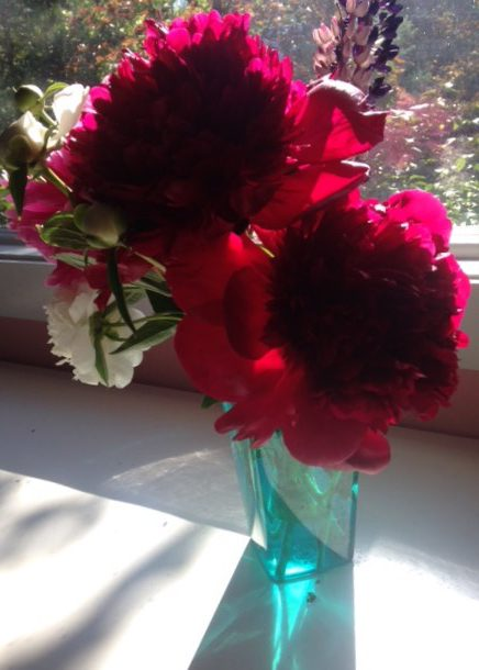 Flowers were among the much appreciated gifts of kindness I recently received.
